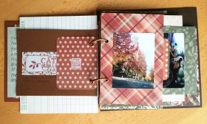 30 Days of Thankful Mini Album by Julie@JulieChats.com @juliechatsblog @juliechats @craftsavvy #craftwarehouse #minialbum #scrapbook #thankful #gratitude #authentiquepaper #americancrafts #silhouettecameo #aliedwardsdesign
